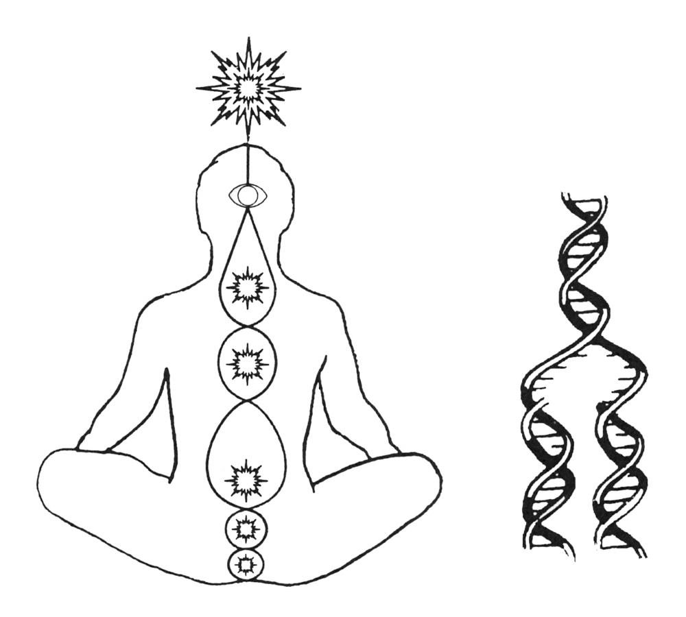 Chacras e ADN