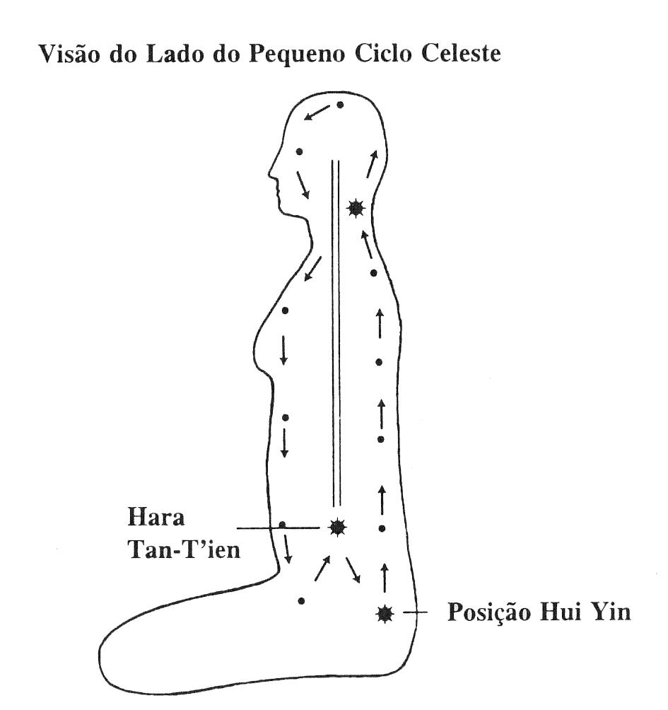 Ciclo Celeste